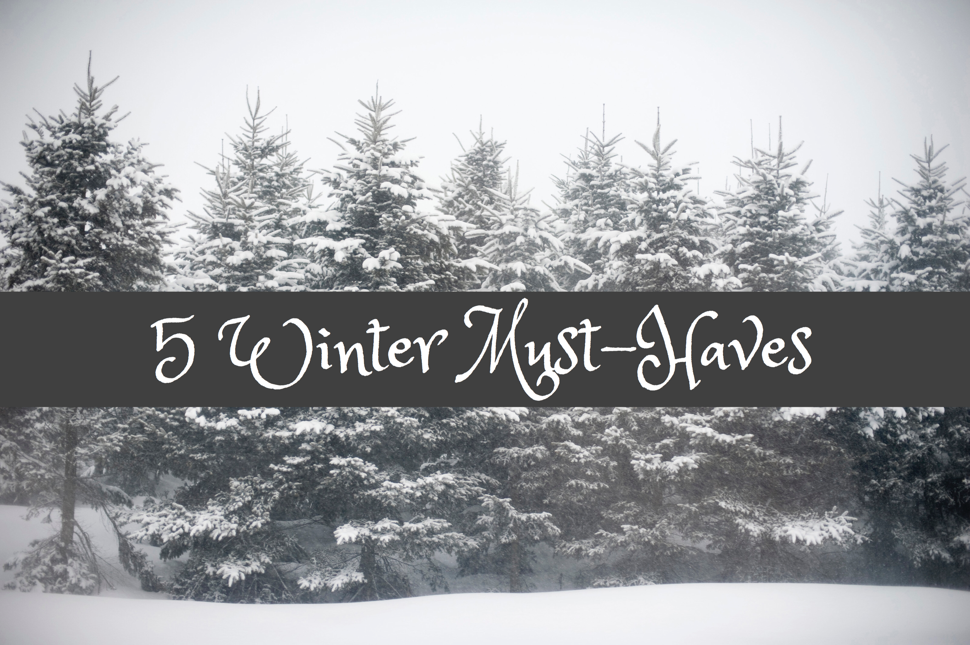 Blogmas Day 7: 5 Winter Must-Haves