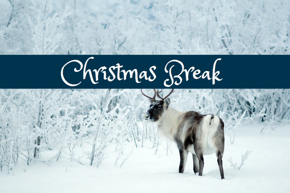 Blogmas Day 8: Christmas Break