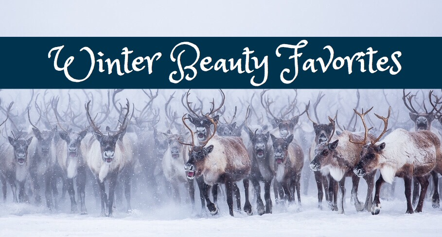 Blogmas Day 9: Winter Beauty Favorites